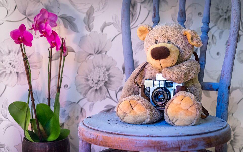 teddy-bear-1710641_960_720